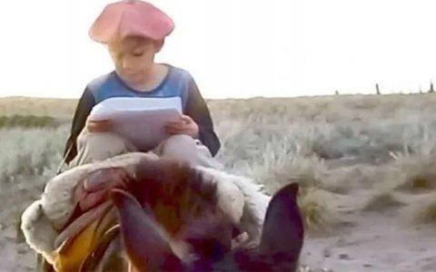 Tiene 7 años y recorre kilómetros a caballo para entregar la tarea