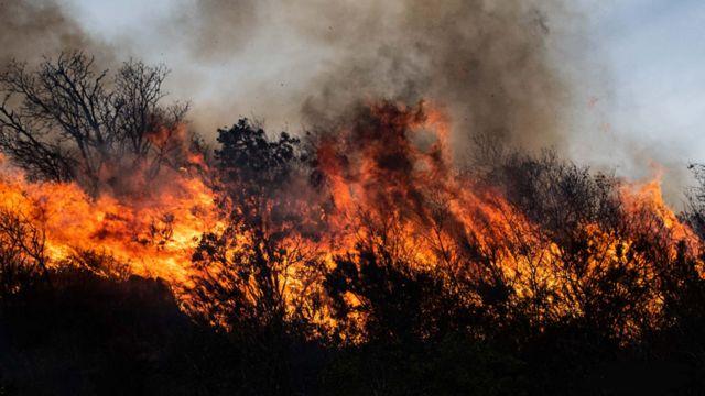 Ruralistas rechazan la Ley que prohíbe producir en tierras incendiadas