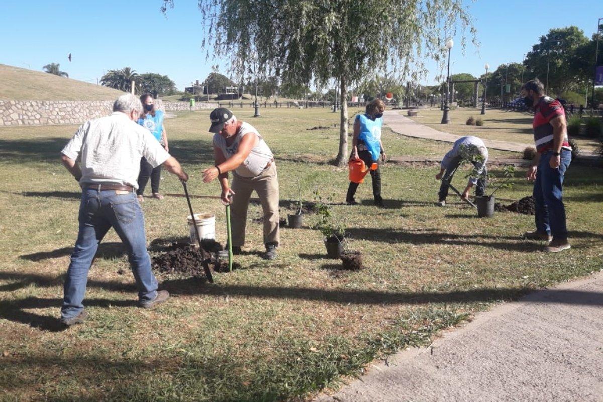 Plantan árboles nativos en la Costanera Sur de Gualeguaychú