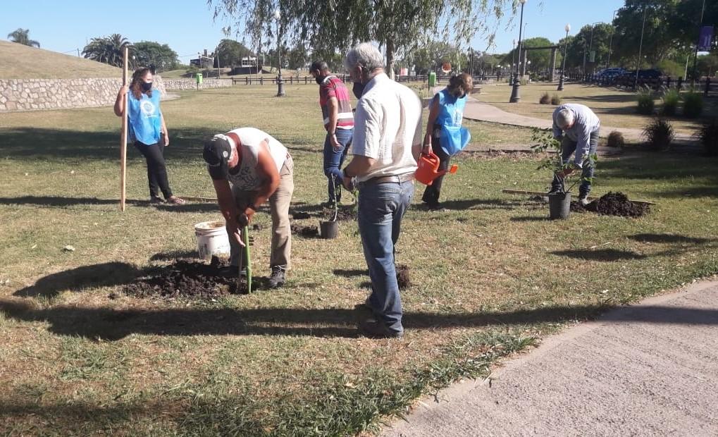 El Municipio y el Rotary plantaron árboles nativos en Costanera Sur